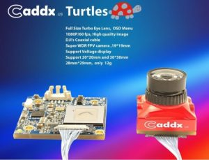 Caddx Turtles Review